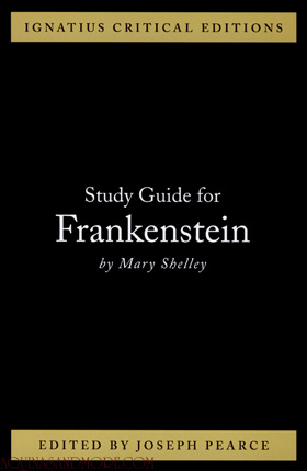 frankenstein mary shelley essay questions